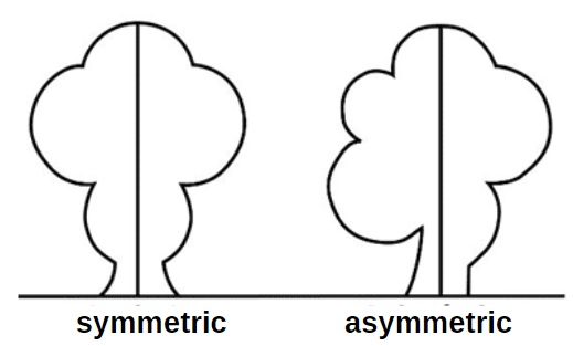 Difference between Symetric and Asymmetric for Kids