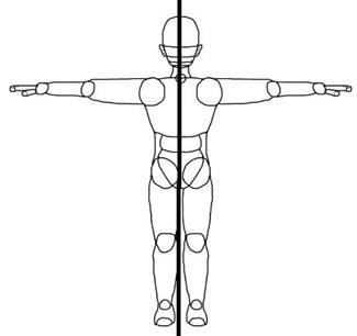 Symmetry in Human Body for Kids.