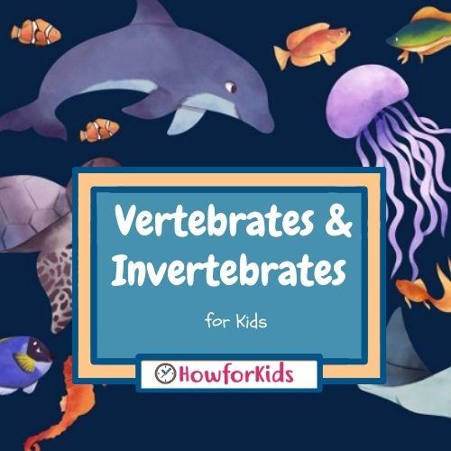 Vertebrates and Invertebrates for Kids