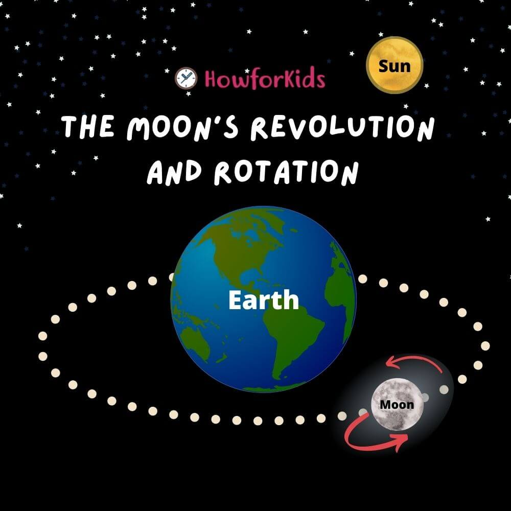 Motions of the Moon. Revolution and Rotation