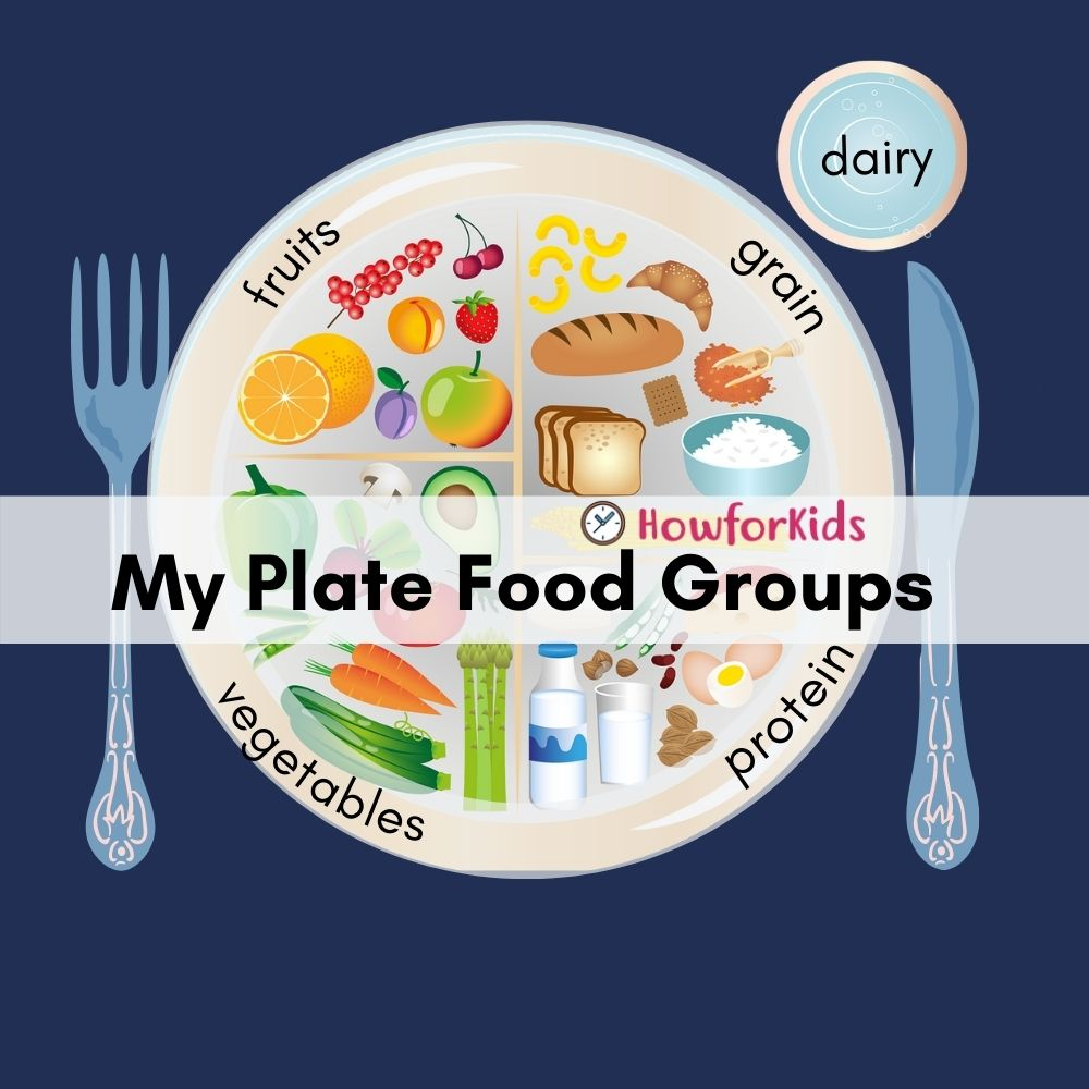 My Plate  Basic Food Groups for children