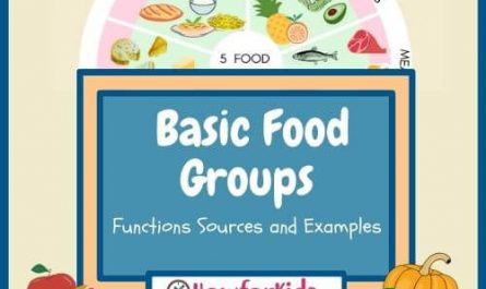 The Five Basic Food Groups for Kids