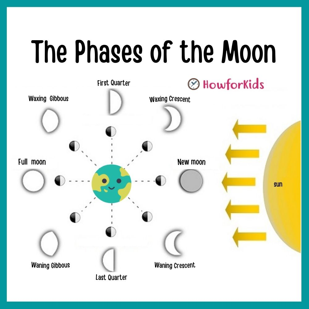 The Phases of the Moon for kids